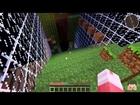 Ant Farm Survival Recording 2 episode 6
