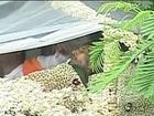 Rajesh Khannas Funeral